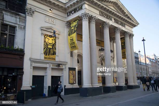 the lion king musical stock photos and pictures