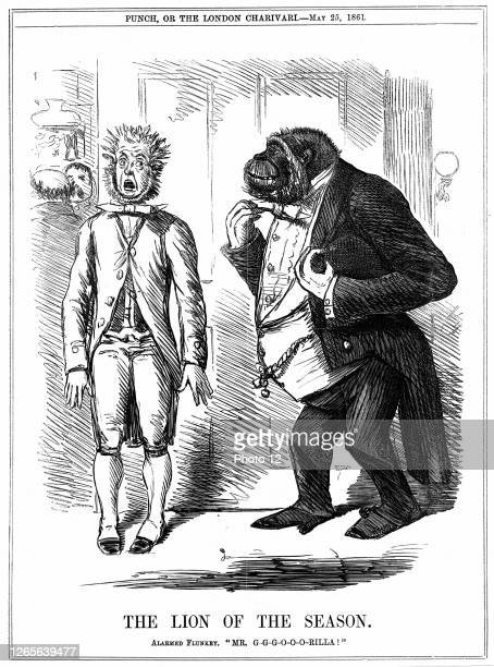 """The Lion of the Season': John Leach cartoon from """"Punch"""" London 25 May 1861, while controversy over Darwin's """"Origin of Species"""" was raging...."""