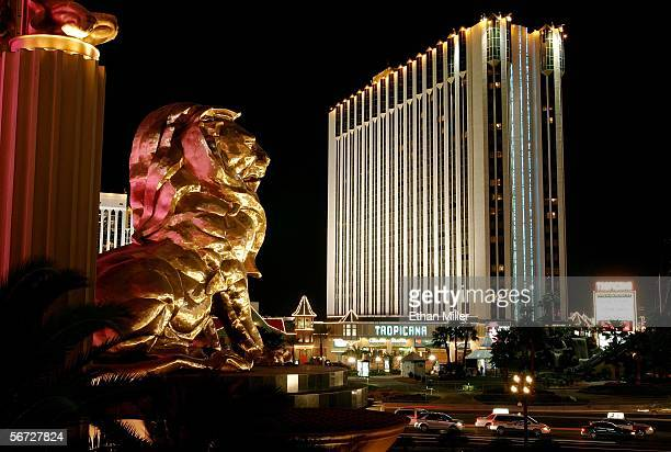 The lion over the Strip entrance of the MGM Grand Hotel/Casino and the Tropicana Resort and Casino are shown February 1 2006 in Las Vegas Nevada