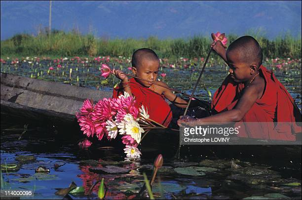 The 'little Buddhas' of Lake Inle In Myanmar In 2003During their retreat at the monastery the young Inthas spend their afternoons playing on the lake...