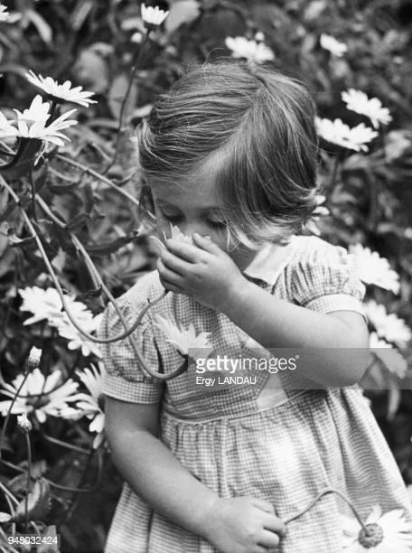 The little girl with daisies 1930 La petite fille aux marguerites 1930