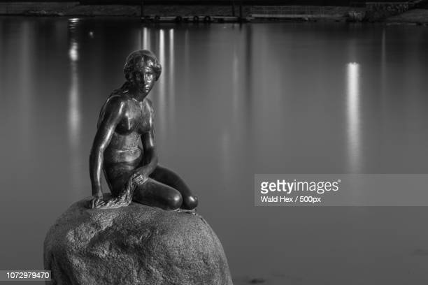 the little mermaid - wald stock pictures, royalty-free photos & images