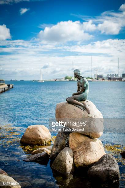 the little mermaid statue - little mermaid stock photos and pictures
