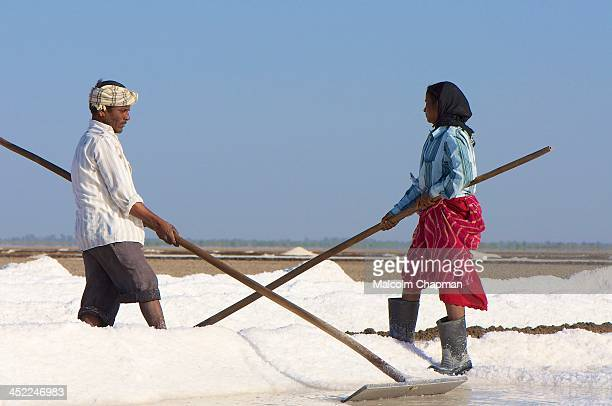 CONTENT] The Little Rann of Kutch is famous for its unique saltpans where salt is harvested by local tribes Unidentified woman man salt worker Little...