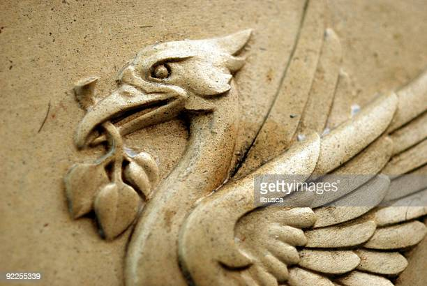 the liverpool liver bird - liver stock photos and pictures