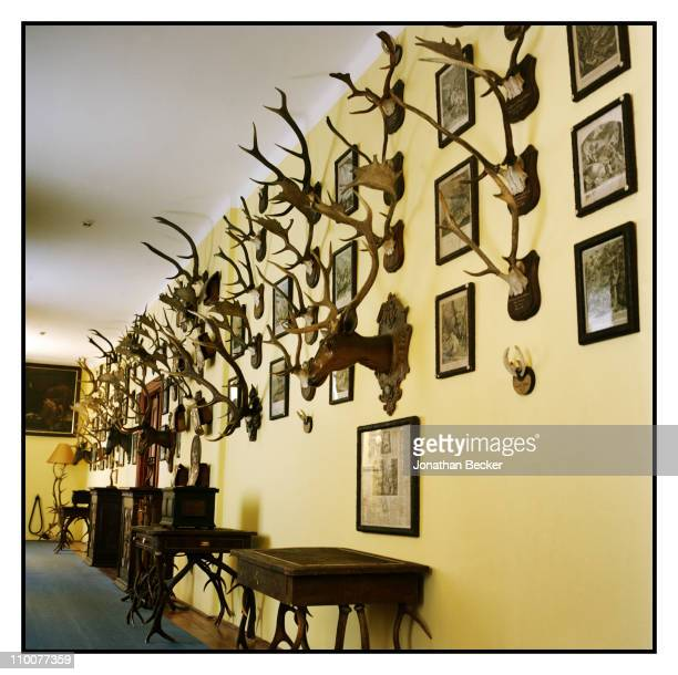 The Lobkowicz Family The antler music room of the Nelahozeves Castle is photographed for Vanity Fair Magazine on December 17 2009 in Prague Czech...