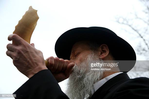 The local Tokea Rabbi Kahn blowing a Shofar for Rosh Hashanah to mark the start of the new year in Stamford Hill The Shofar is usually made from a...