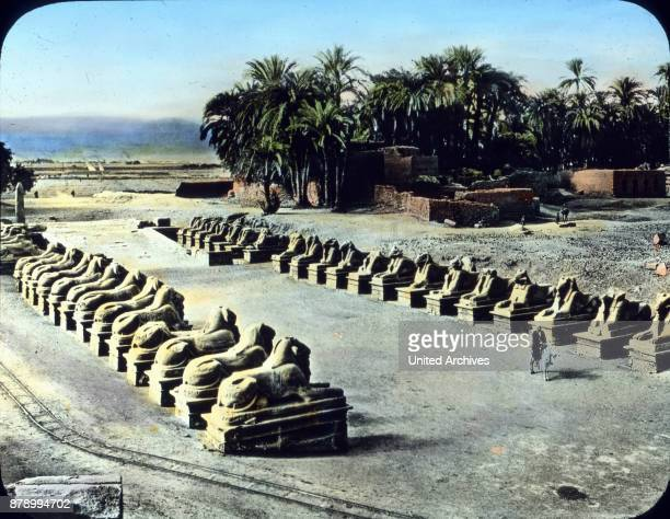 The locations of Luxor and Karnak now rising on the site of ancient Thebes are one huge ruin site Good condition has this unique sphinx avenue that...
