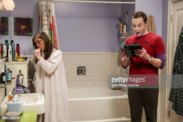 The Locomotion Reverberation Pictured Amy Farrah Fowler and Sheldon Cooper Leonard and Wolowitz try to distract Sheldon when he slows the progress of...