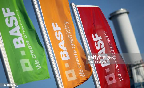 The logo of German chemical giant BASF is seen on flags fluttering in front of the company's headquarters in Ludwigshafen western Germany on February...