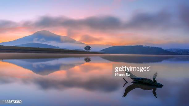 the lonely pine tree reflection on the lake with magical of the sky and clouds at sunrise
