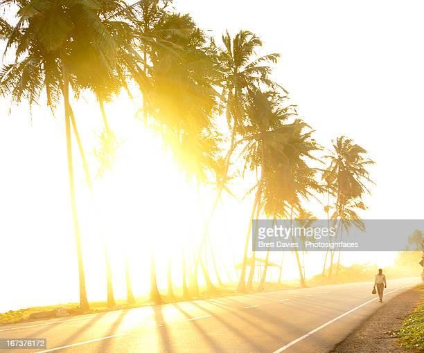 The lonely road to Sri Lanka paradise
