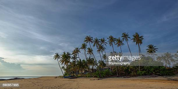 the lonely village - terengganu stock pictures, royalty-free photos & images