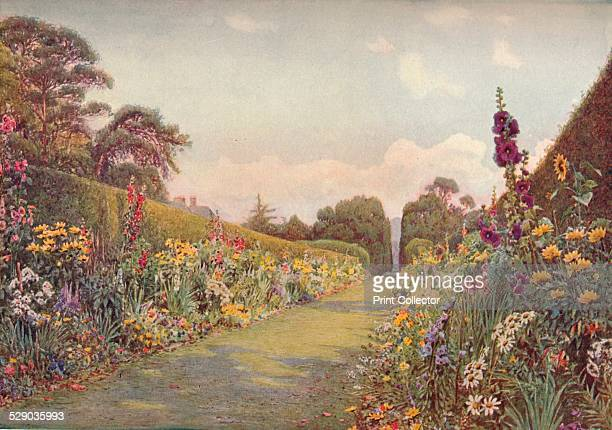 The Long Border Holme Lacy After a water colour by Ernest Arthur Rowe From The Studio Volume 28 [London Offices of the Studio London 1903]