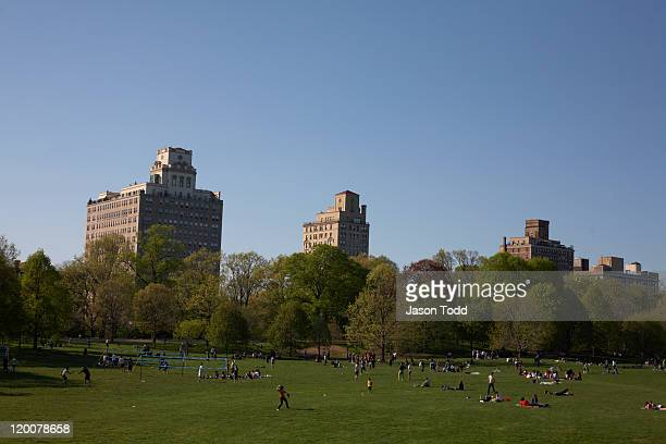 the long meadow at prospect park - プロスペクト公園 ストックフォトと画像