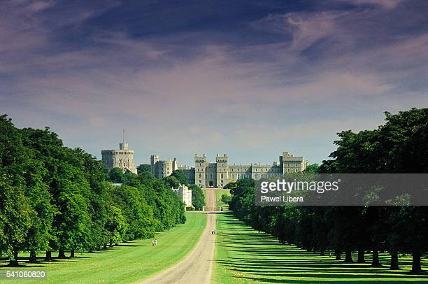 the long walk - windsor england stock pictures, royalty-free photos & images