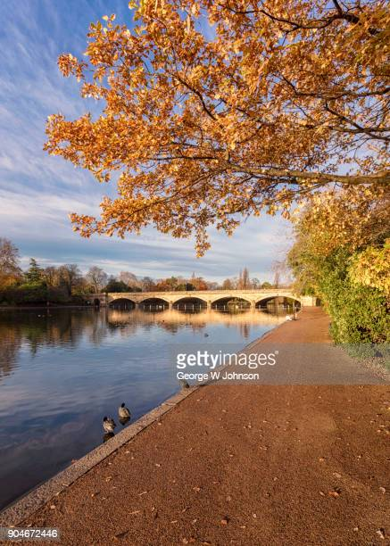 the long water - hyde park london stock photos and pictures