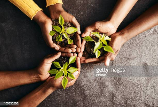 the long-term sustainability of nature is our collective responsibility - black man bulge stock pictures, royalty-free photos & images