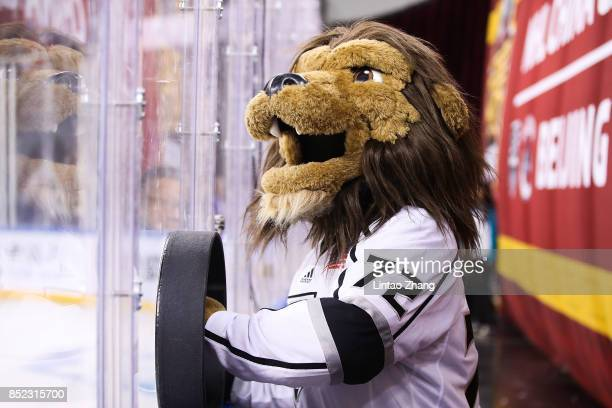 The Los Angeles Kings mascot Bailey looks on during the preseason game between the Los Angeles Kings and the Vancouver Canucks at Wukesong Arena on...