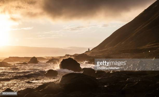 the lost coast and its light house - christina felschen stock photos and pictures