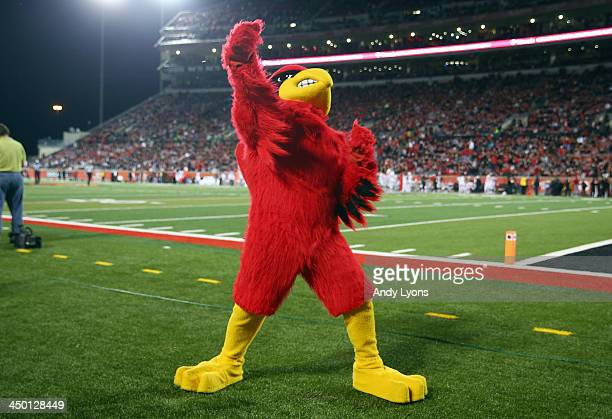 The Louisville Cardinals mascot performs during the game against the Houston Cougars at Papa John's Cardinal Stadium on November 16 2013 in...