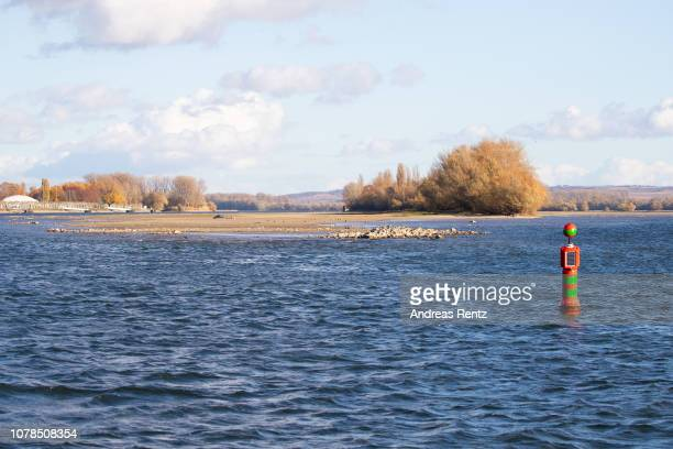 The low water in the River Rhine is pictured on November 13 2018 in Ruedesheim Germany Summer heat wave in Germany as well unfavorable wind...