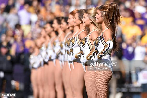 The LSU Golden Girls before the football game between Florida and LSU on November 19 2016 at Tiger Stadium in Baton Rouge LA Florida would defeat LSU...