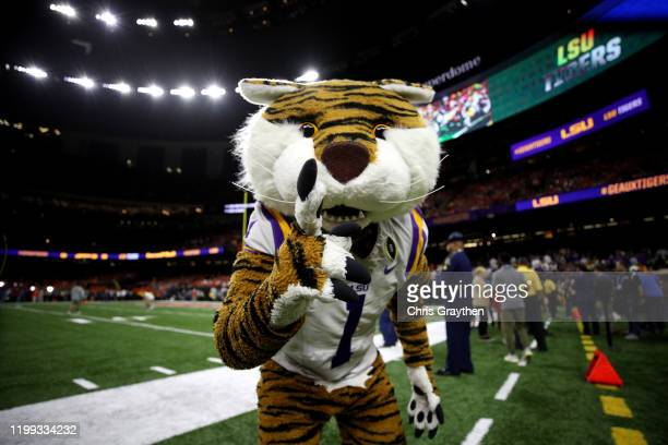 The LSU Tigers mascot poses before the College Football Playoff National Championship game at Mercedes Benz Superdome on January 13 2020 in New...