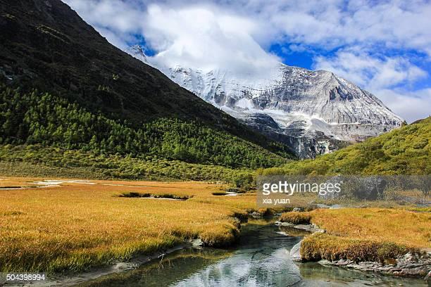 the luorong grasslands and mt. jampelyang's (yang mai yong),the yading national reserve,daocheng,garzê tibetan autonomous prefecture,sichuan,china - provinz yunnan stock-fotos und bilder