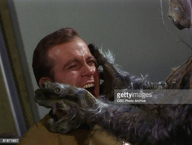 The M-113 Creature attacks Captain James T. Kirk, played by Canadian actor William Shatner, in a scene from 'The Man Trap,' the premiere episode of...