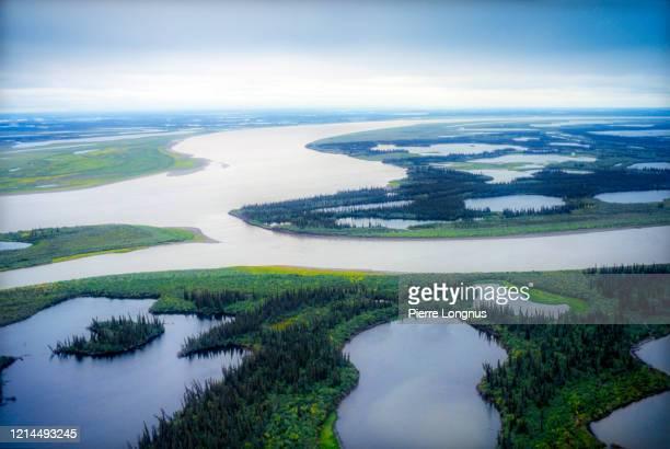 the mackenzie river delta, north of inuvik, near tuktoyaktuk - hoch position stock-fotos und bilder