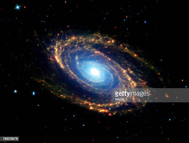 The magnificent spiral arms of the nearby galaxy Messier 81 are highlighted in this image from NASA's Spitzer Space Telescope. Located in the...