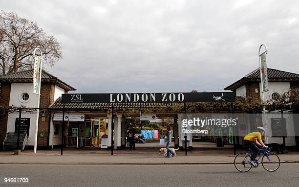 The main entrance to London Zoo in Regent's Park, London, Thursday, April 27, 2006. There's good news for London's lions and kangaroos. The zoo is...