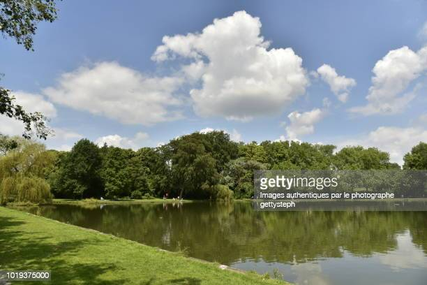 the main lake of park with his mirror effect - メッヘレン ストックフォトと画像