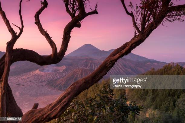 the majestic bromo volcanic landscape at sunrise - bromo tengger semeru national park stock pictures, royalty-free photos & images