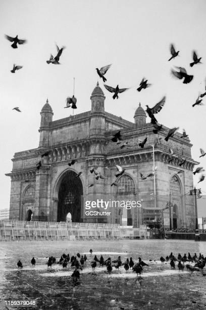 the majestic gateway of india, mumbai - mumbai stock pictures, royalty-free photos & images