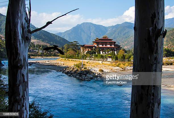 The Majestic Monastery-fortress, the Palace of Great Happiness in Punakha, the country's old capital, which is about two hours away from Thimphu on...