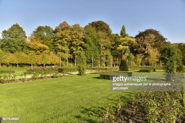 the majestic rosary with different pink flowers ,lawns and hedges surrounded luxuriant woodland in autumn - arboreto foto e immagini stock