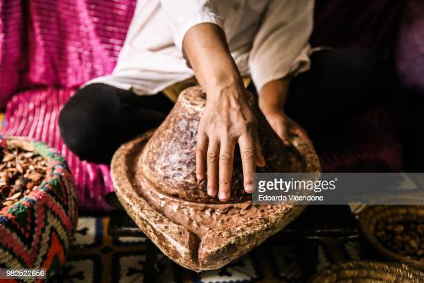 the making of argan oil - marrakech - argan tree stock pictures, royalty-free photos & images