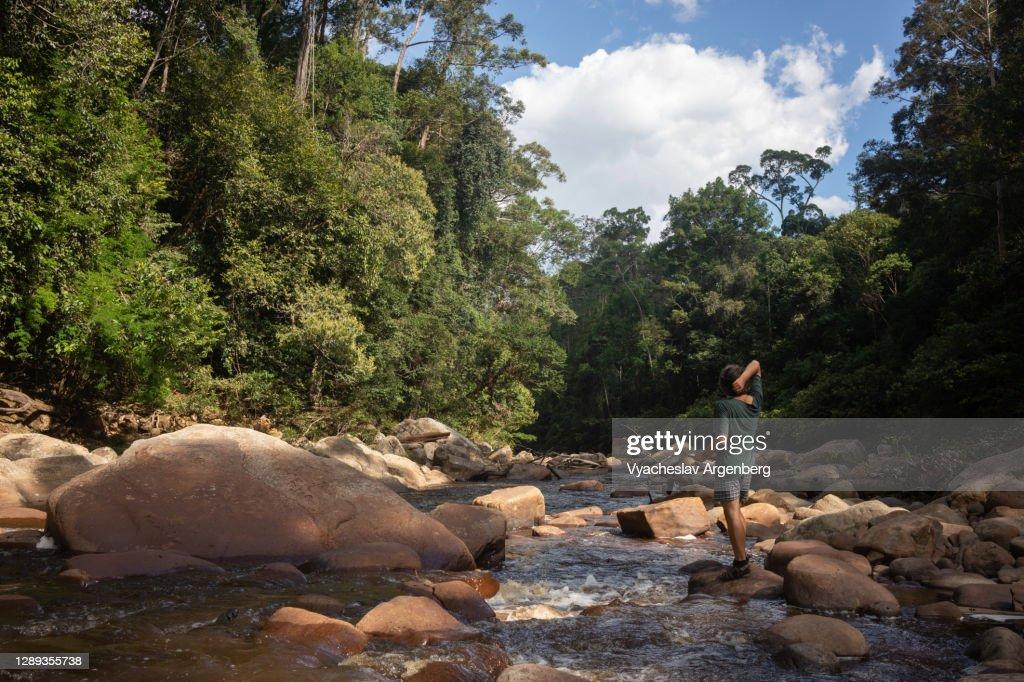 The Maliau River in Maliau wild tropical jungle, Borneo : ストックフォト