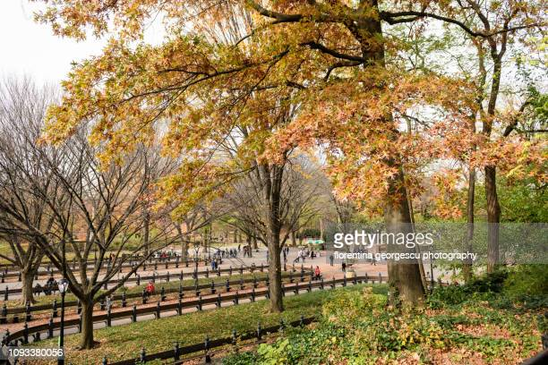 The Mall, a tree-lined area in the Central Park in fall colors, New York City