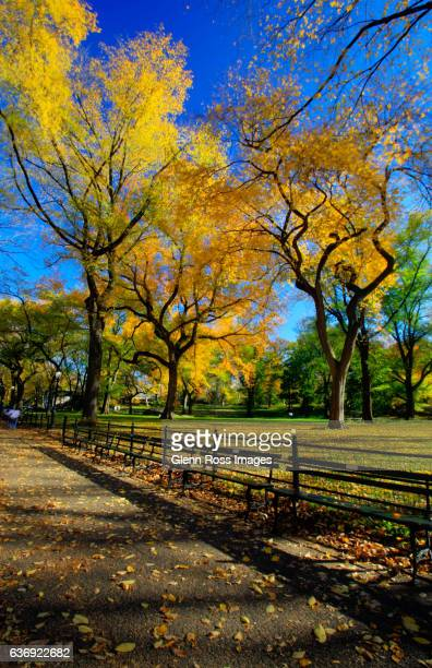 The Mall, Central Park, New York
