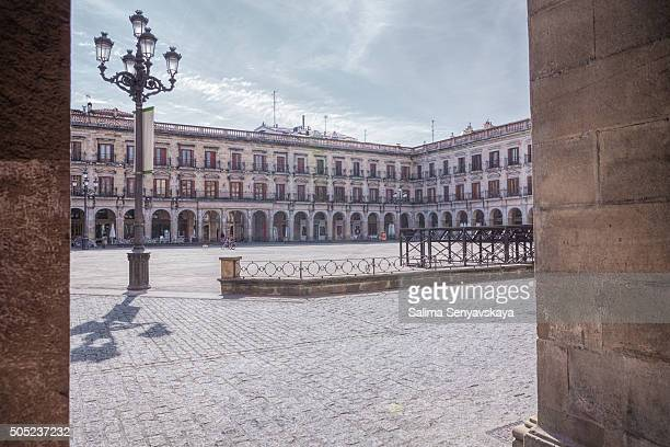 the man with a dog on espainia plaza - vitoria spain stock pictures, royalty-free photos & images