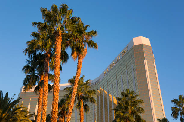 The Mandalay Bay Hotel and Casino at sunrise, towering palm trees in foreground, Las Vegas, Nevada, USA