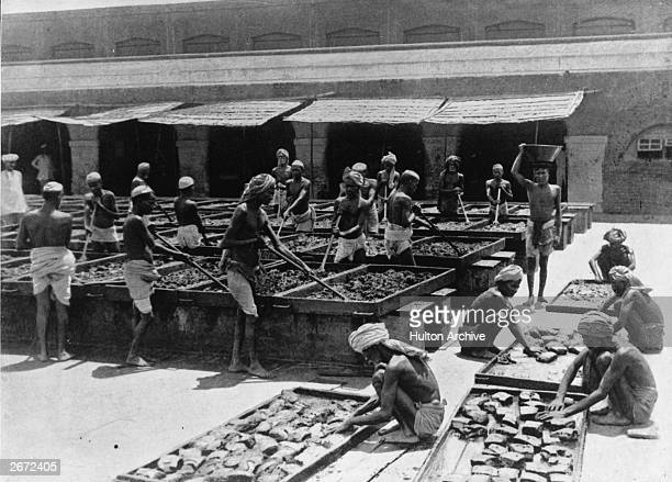 The manufacture of opium in India.