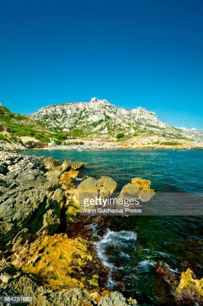 the marseilleveyre calanque, marseille, bouches du rhone, france - calanques stock pictures, royalty-free photos & images