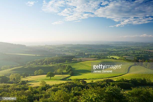 the marshwood vale from pilsdon pen. dorset. england. uk. - british culture stock pictures, royalty-free photos & images