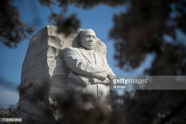 The Martin Luther King Jr Memorial is framed as cherry trees are in full bloom on April 4 2019 in Washington DC On this day in 1968 Dr Martin Luther...