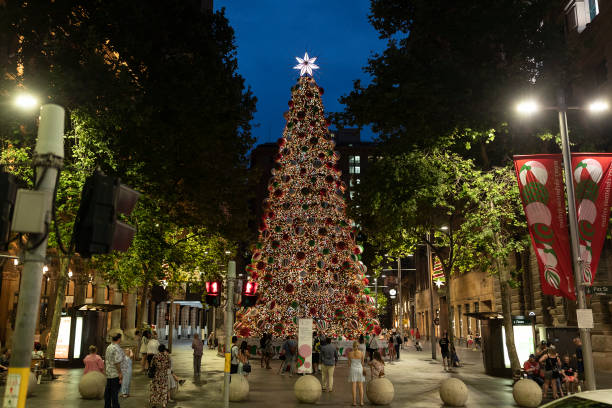 AUS: Sydney's Martin Place Christmas Tree Lights Up For The Festive Season