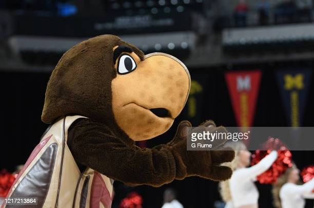 The Maryland Terrapins mascot performs during the game against the Ohio State Buckeyes during the Championship game of Big Ten Women's Basketball...